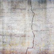 Muro grezzo, muro calcestruzzo, crepatura, muffa, muschio, muro danneggiato,