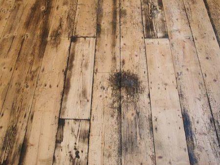 Parquet, legno, anti muffa, protezione, anti sporco, preserva, usura